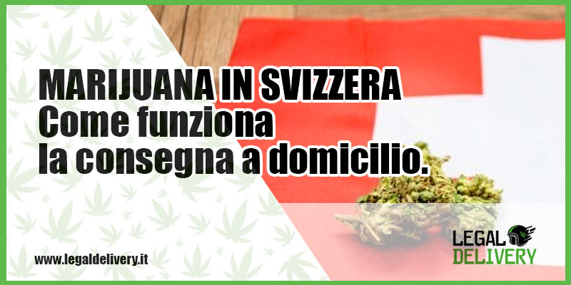 Marijuana light svizzera legaldelivery blog for Domicilio legale